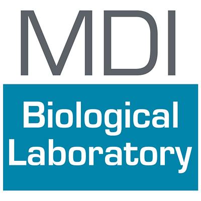 mdi_bio_lab.jpg