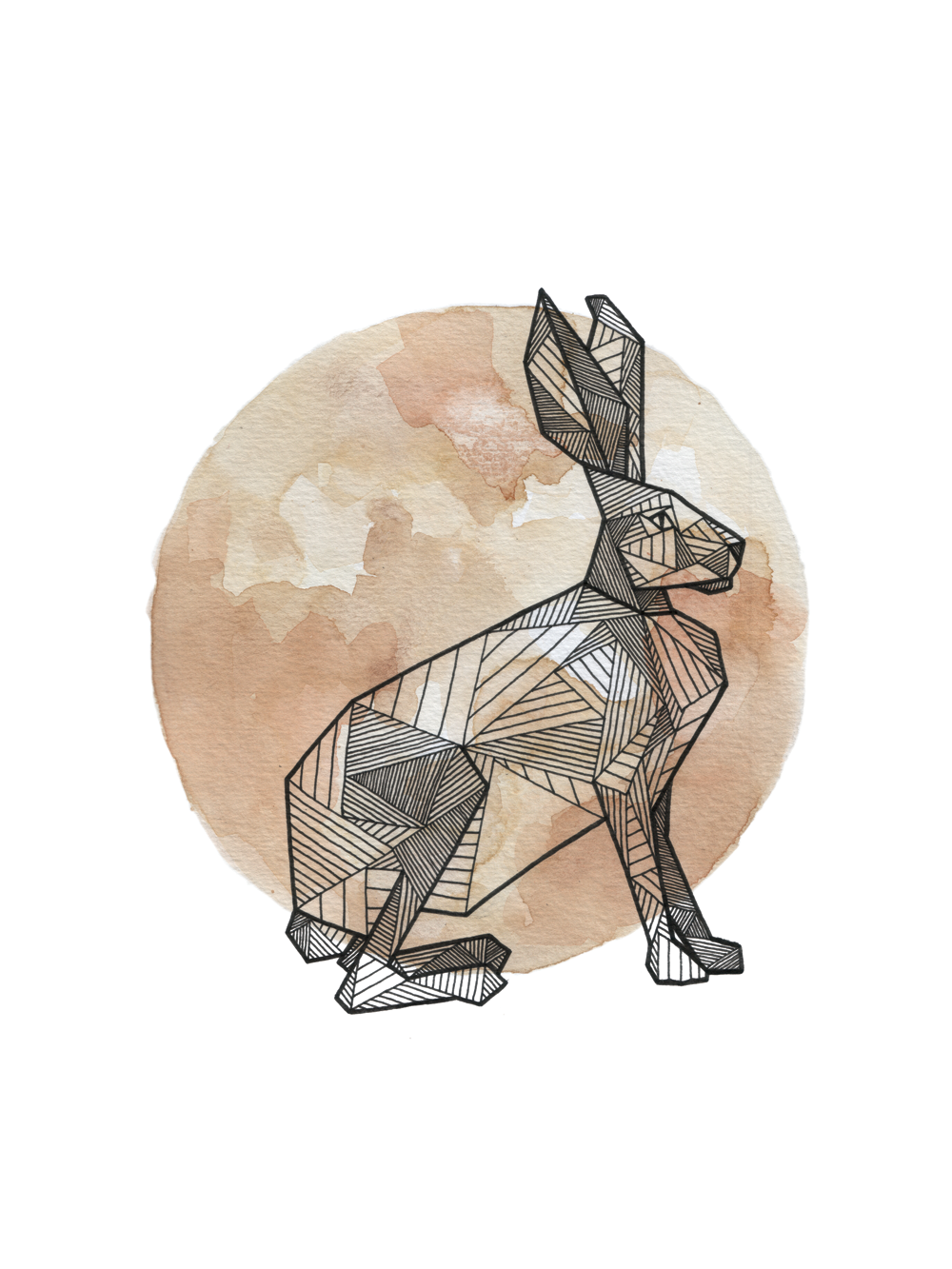 Hare_Clean_Web_1000px.png