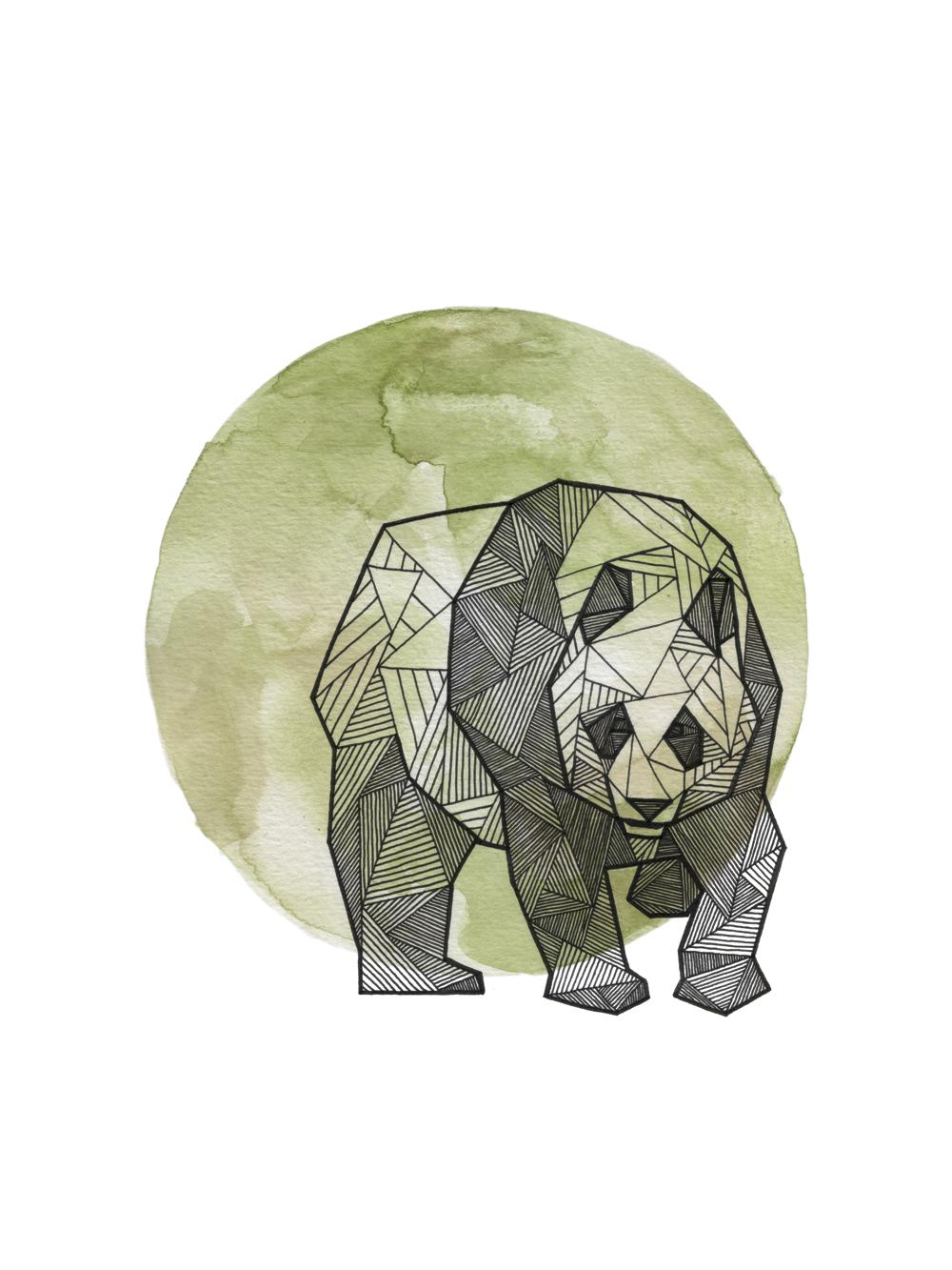 Panda_Clean_Web_1000px.png