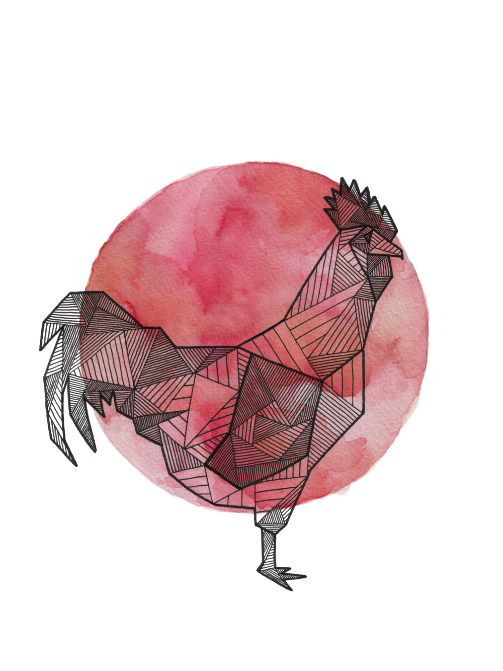 Rooster_Clean_Web_1000px.png
