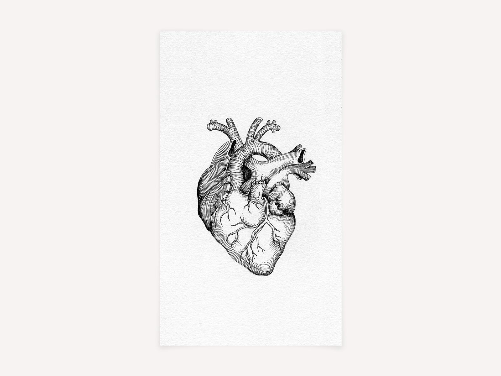 Heartbeat_Ink_5.25x9.jpg