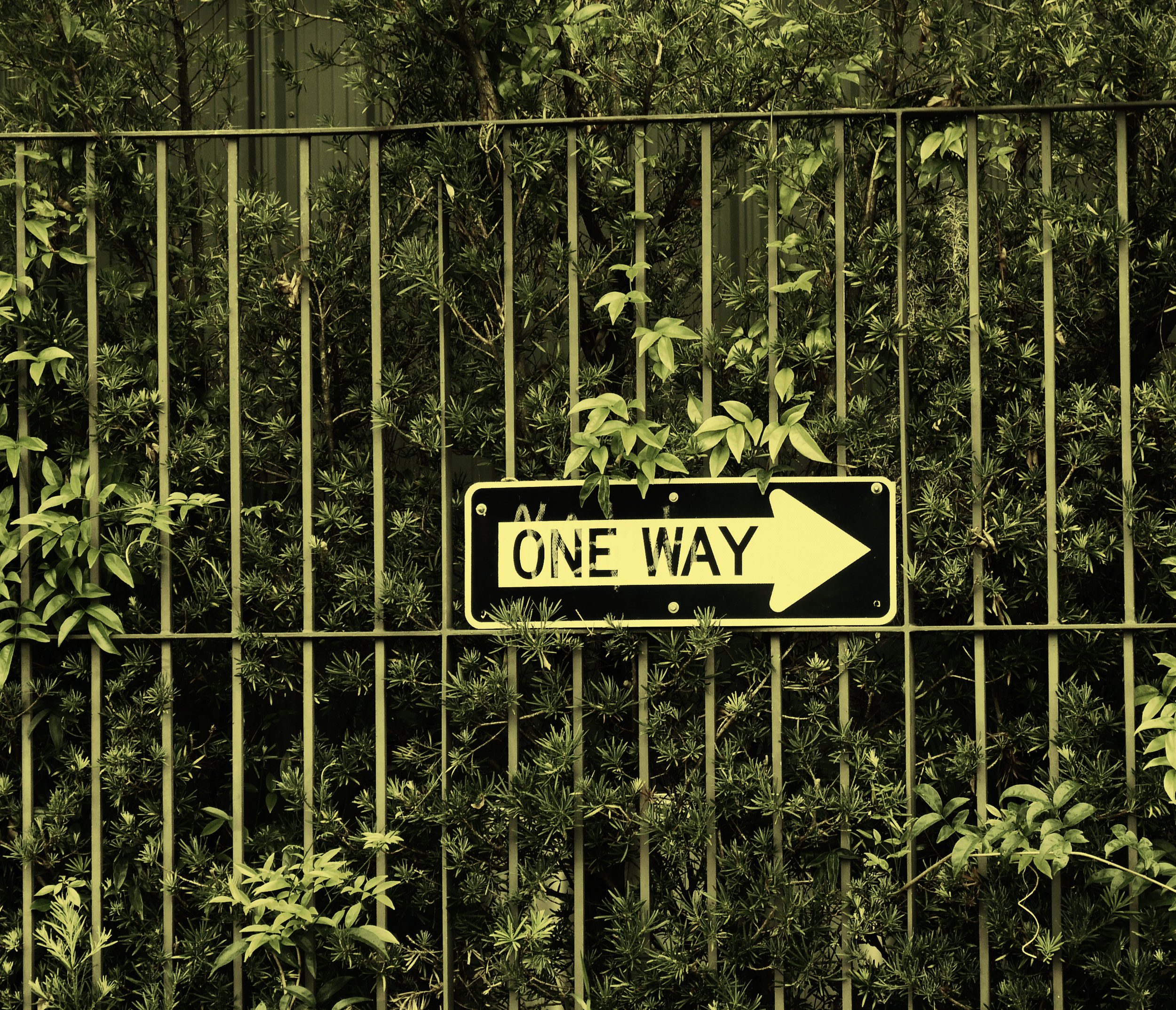 oneway.jpg