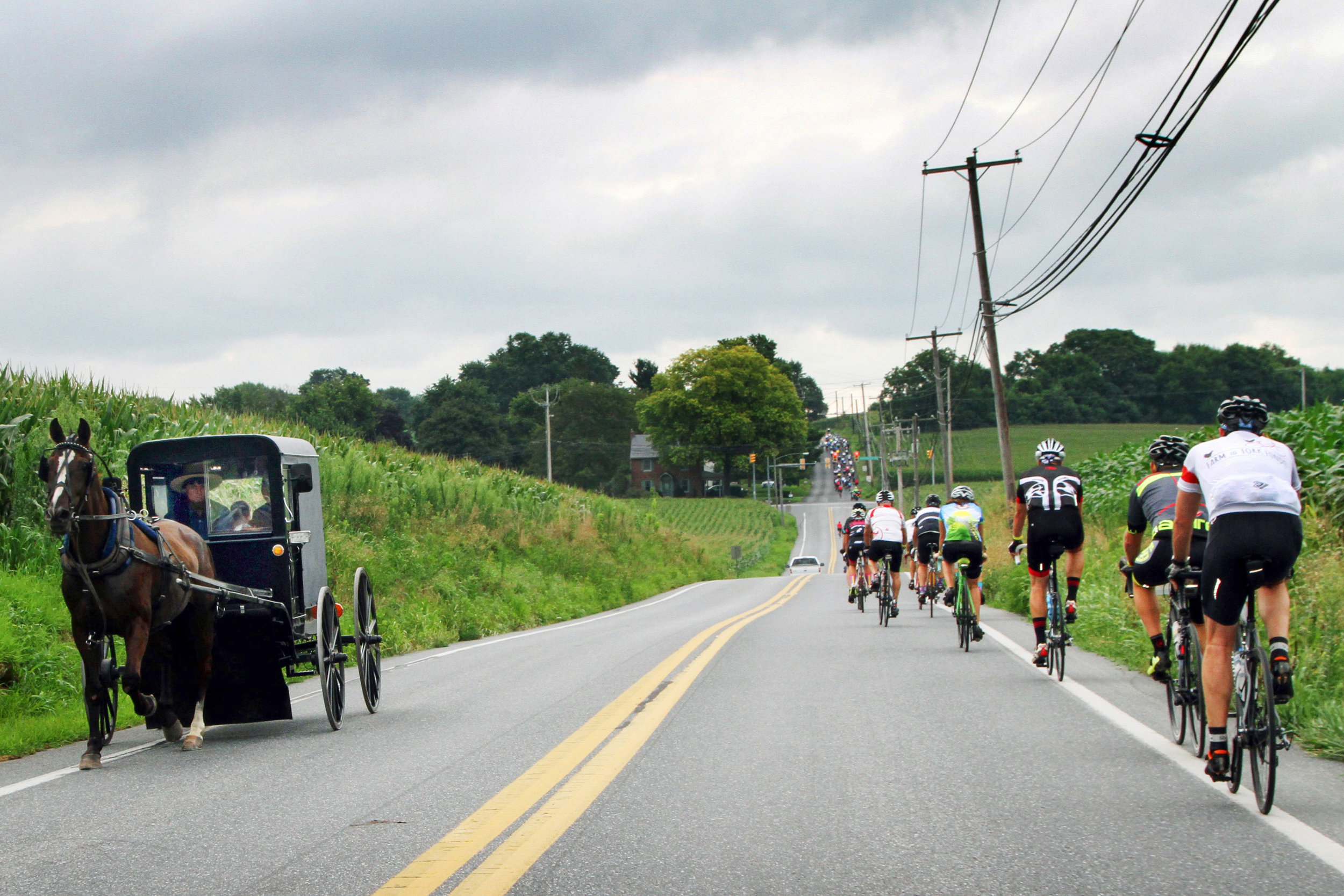 Farm to Fork Fondo Pennsylvania Dutch 03.jpg