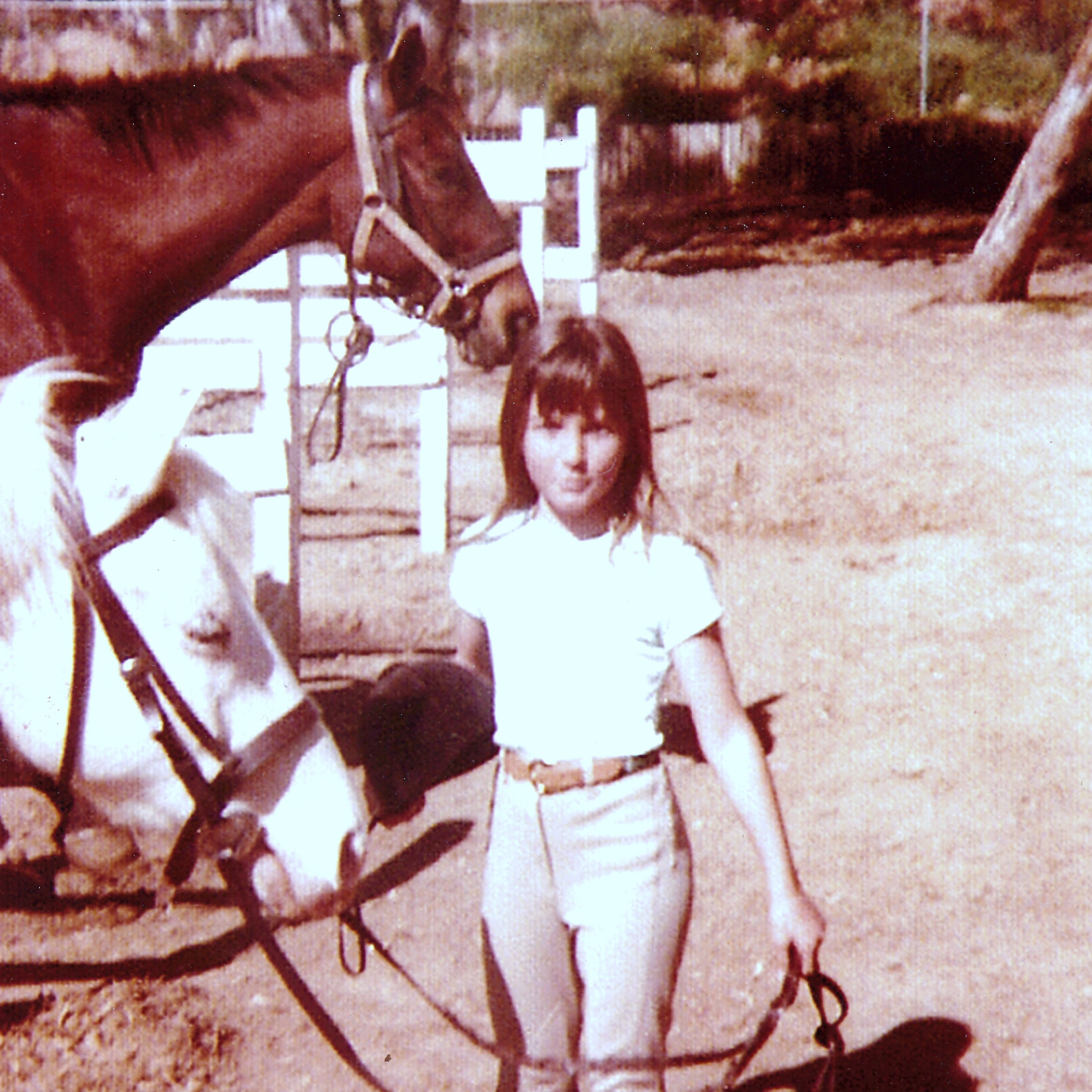 """All Horses Deserve To Be Loved By A Little Girl"" Carole Sinclair circa 1978"
