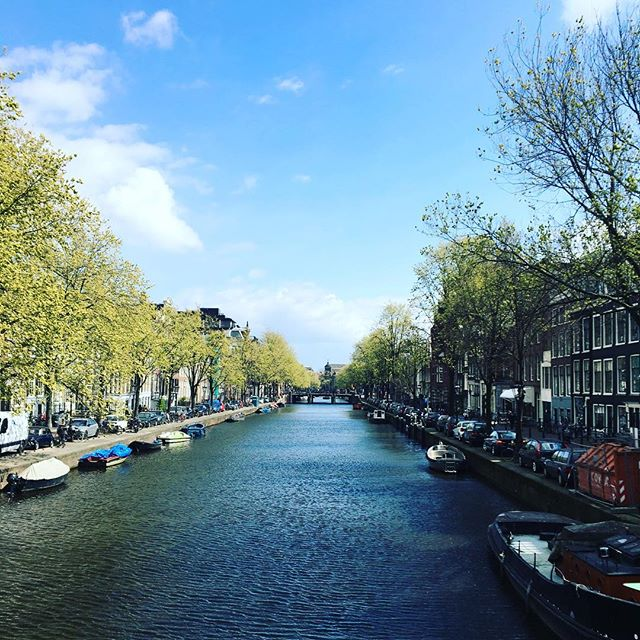 This canal-filled city is pretty rad 🚤🚲🚶🏼‍♂️#amsterdam