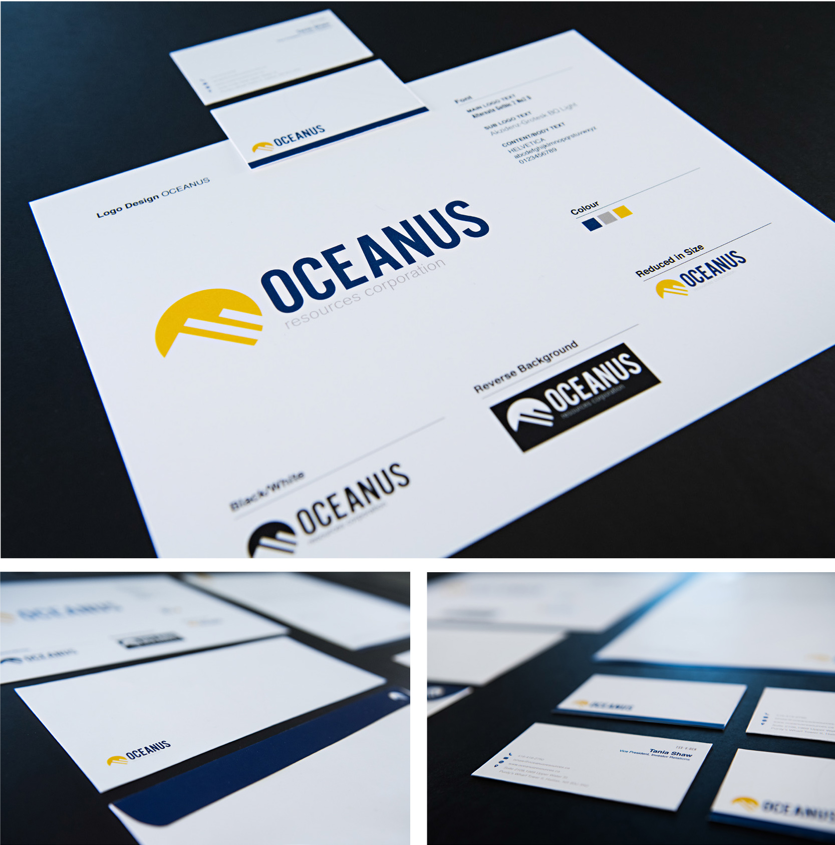 OCEANUS Branding Pitch   Includes Letterhead, Business Cards and Envelopes