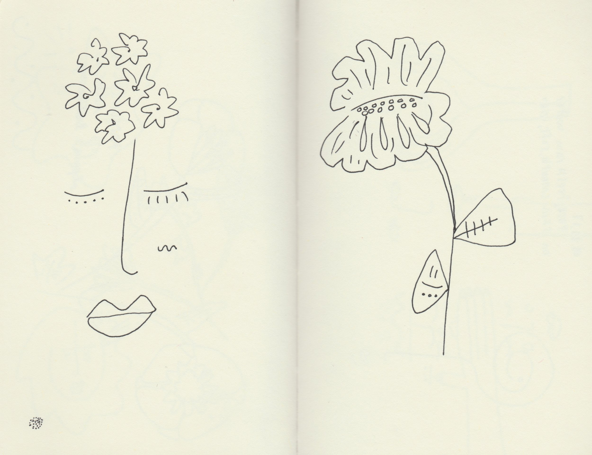 flowerstudy.jpeg