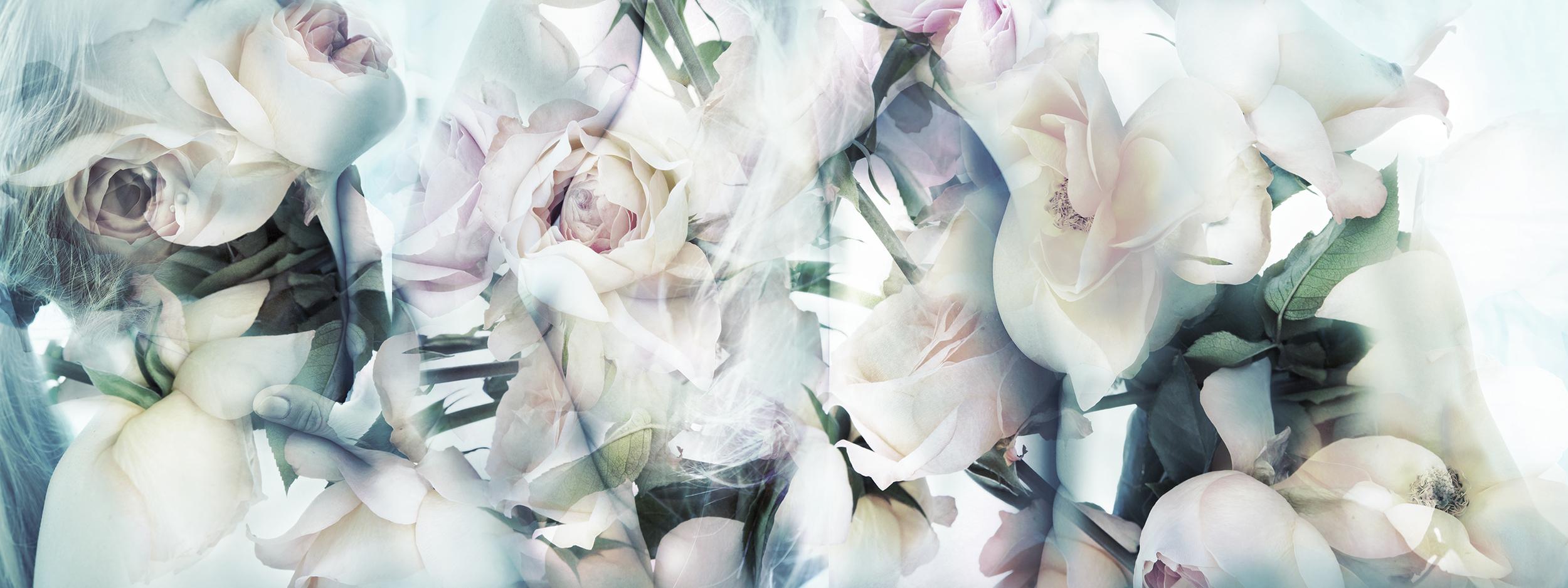 Angi_Bodyparts_Collage.jpg