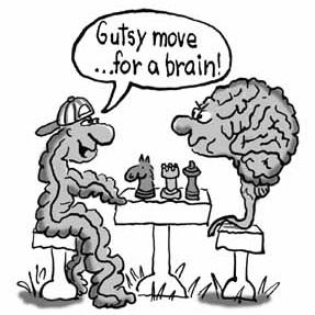 gut-brain-cartoon.jpg
