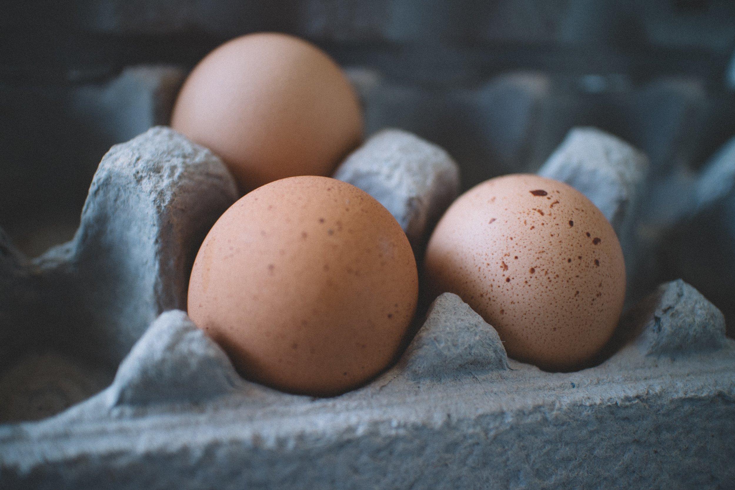 chicken-eggs-close-up-egg-tray-600615.jpg