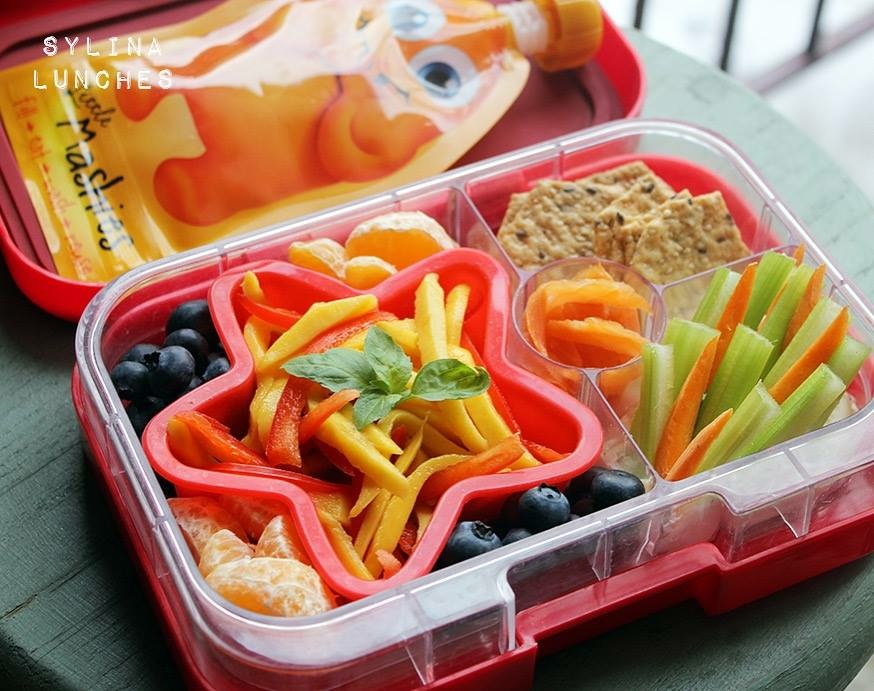 The Yumbox Panino by Sylian Lunches