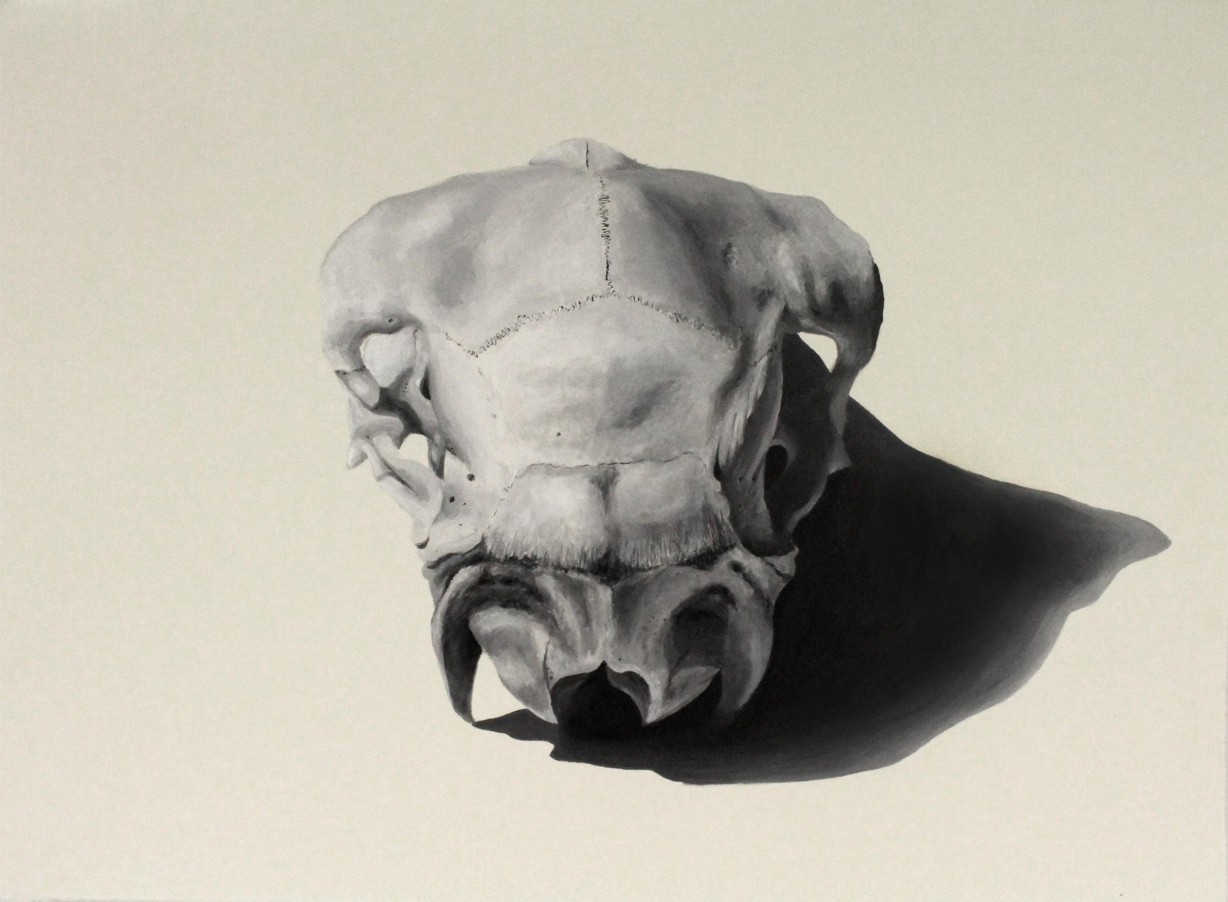 Acrylic on Paper (56x76cm)