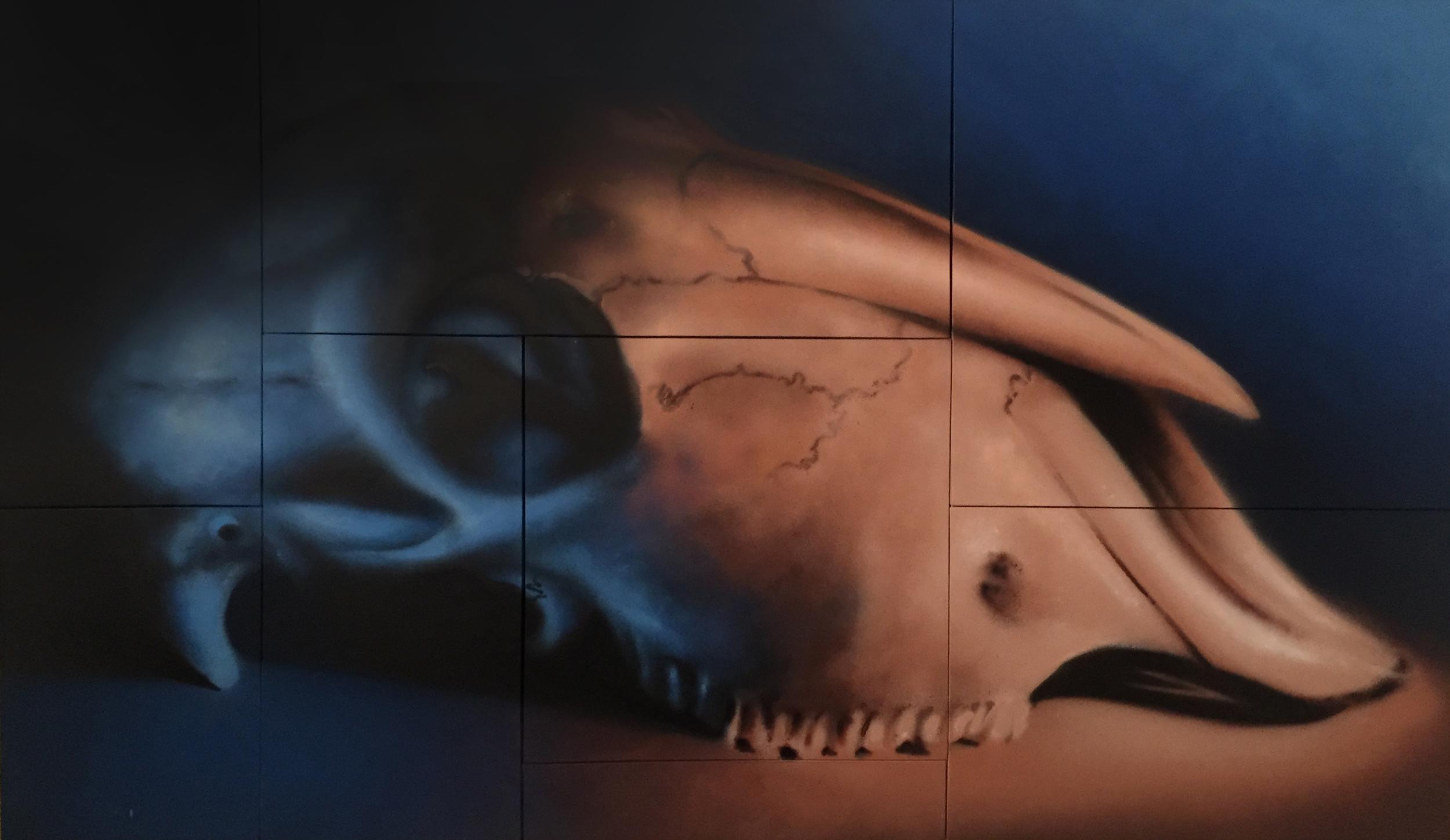 Aerosol on Canvas (250x150cm)