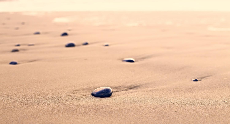 Taller de Introducción a Mindfulness