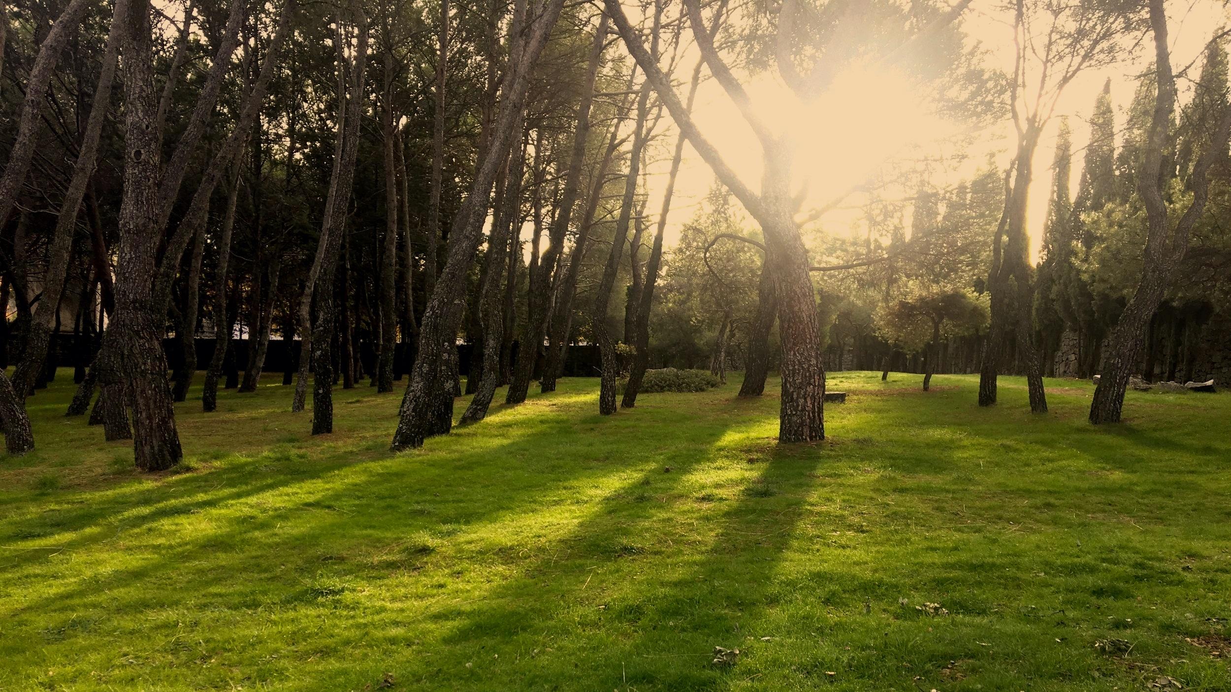 Centro de Retiros Santa María de los Negrales - Foto: Teo Luna