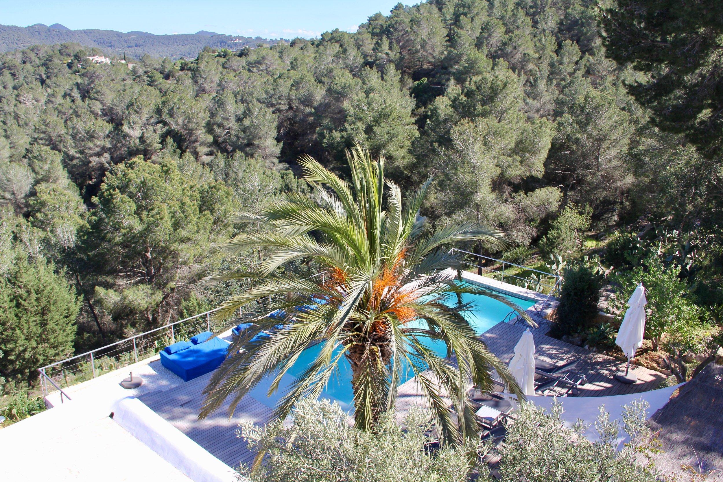 Perch terrace view.jpg
