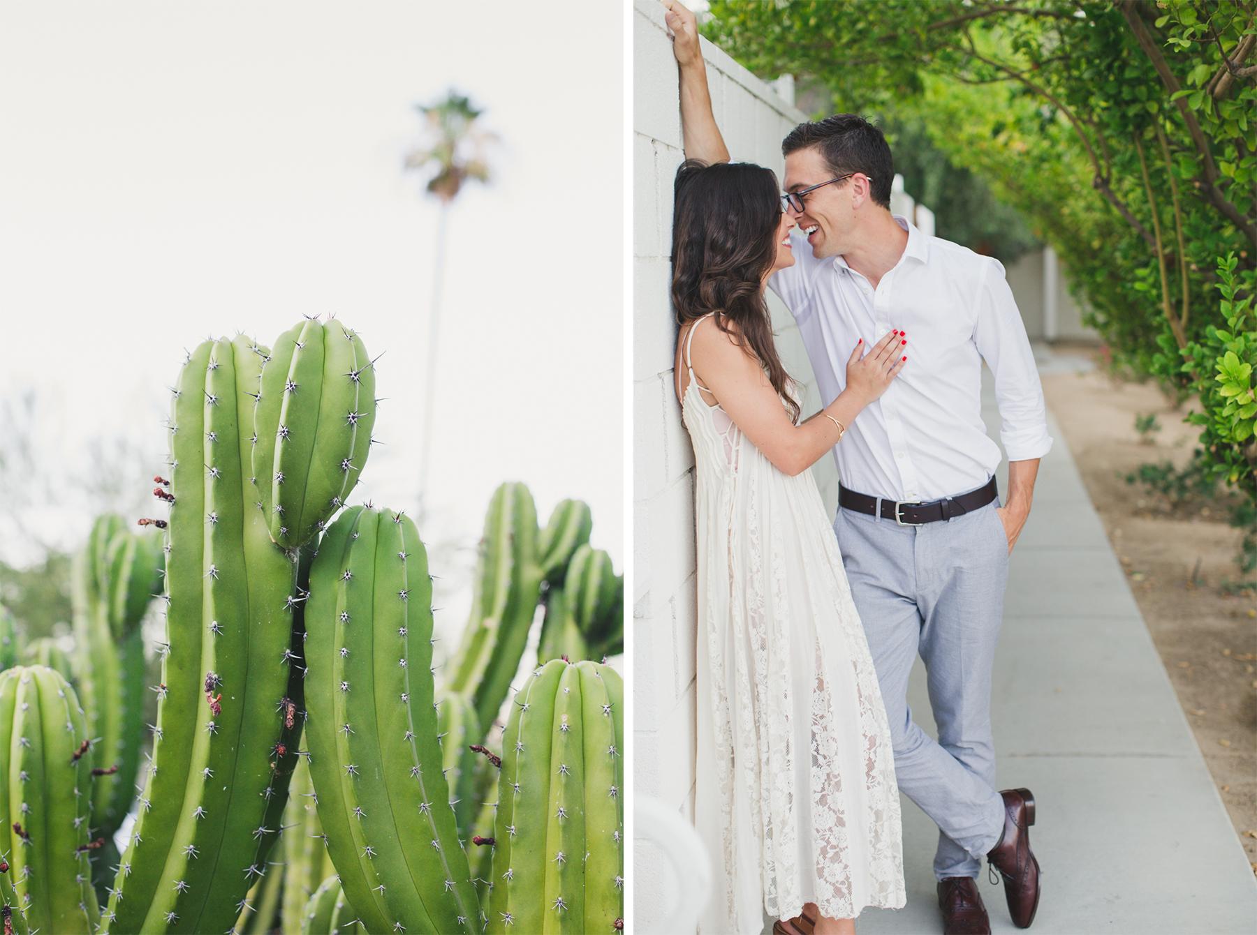 cactus2up.jpg
