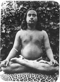 master_meditating_on_a_tige.png