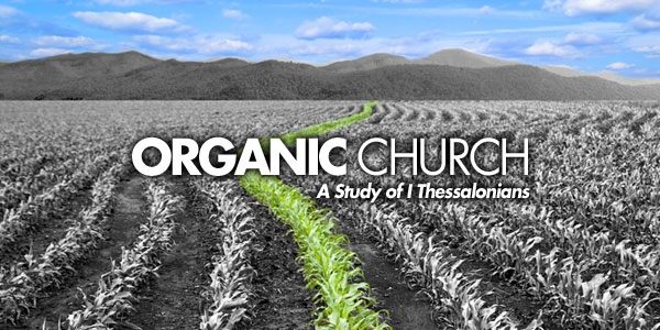 organic church big.jpg