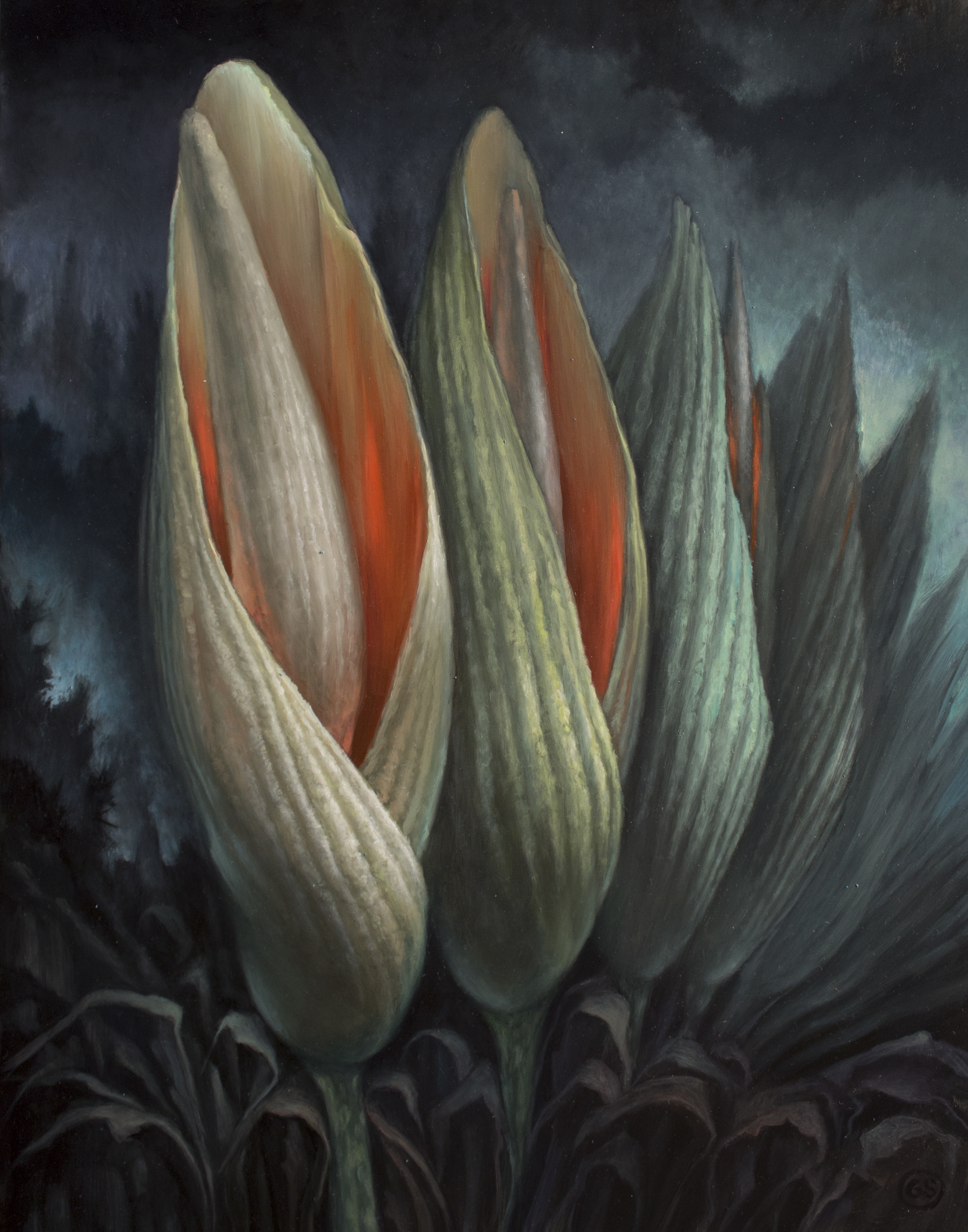 Inflorescence SOLD  oil on panel 14 x 11