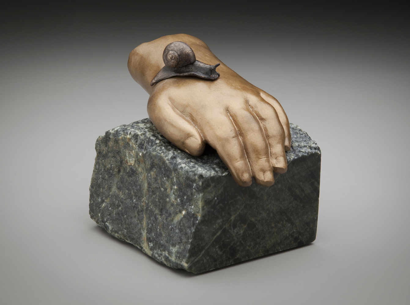 Of Skin and Coiled Shell $900  stone, bronze 4.25 x 13 x 3.5