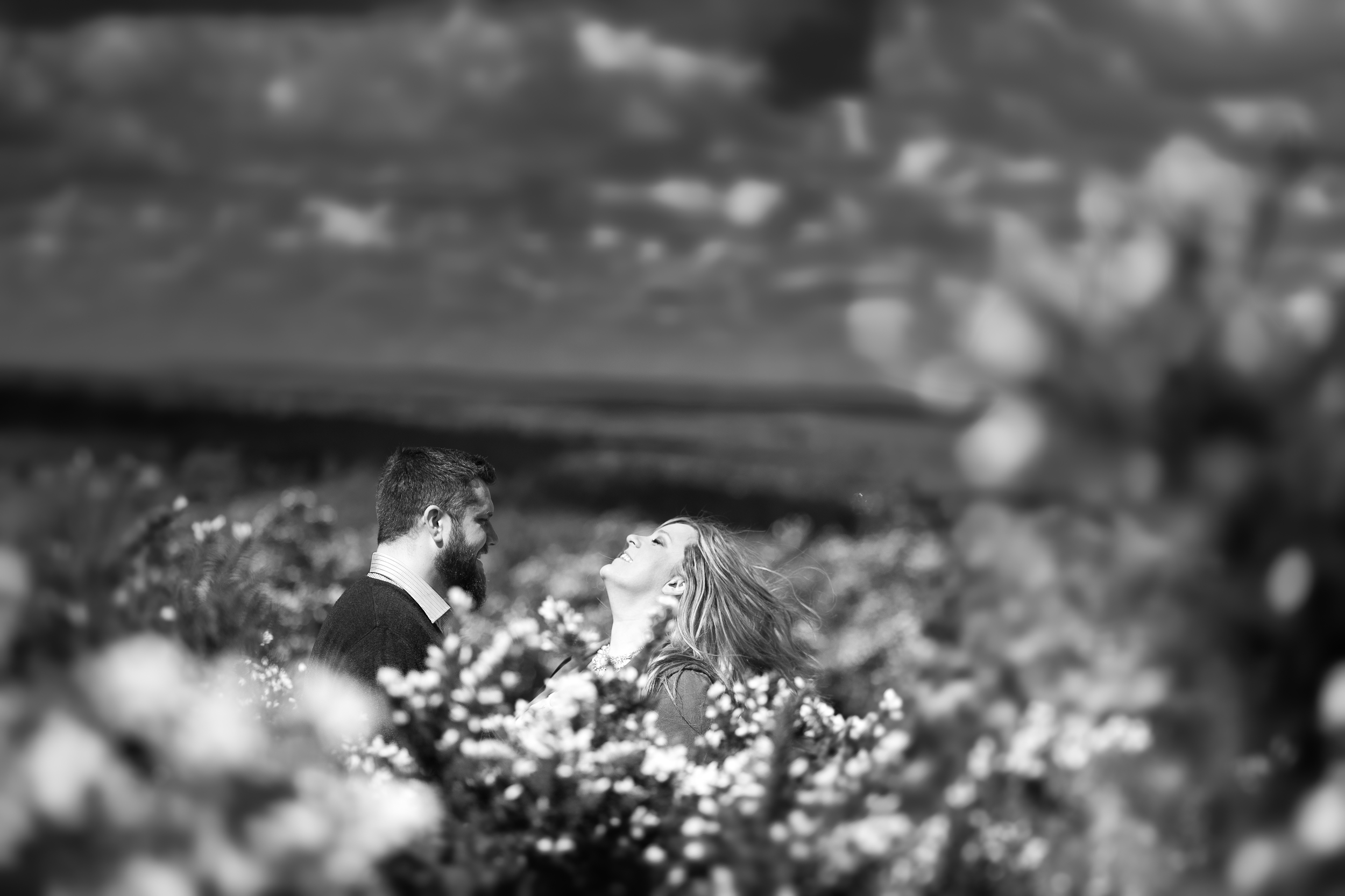 Ashdown-Forest-Pooh-Corner-Sussex-Engagement-Photography-2