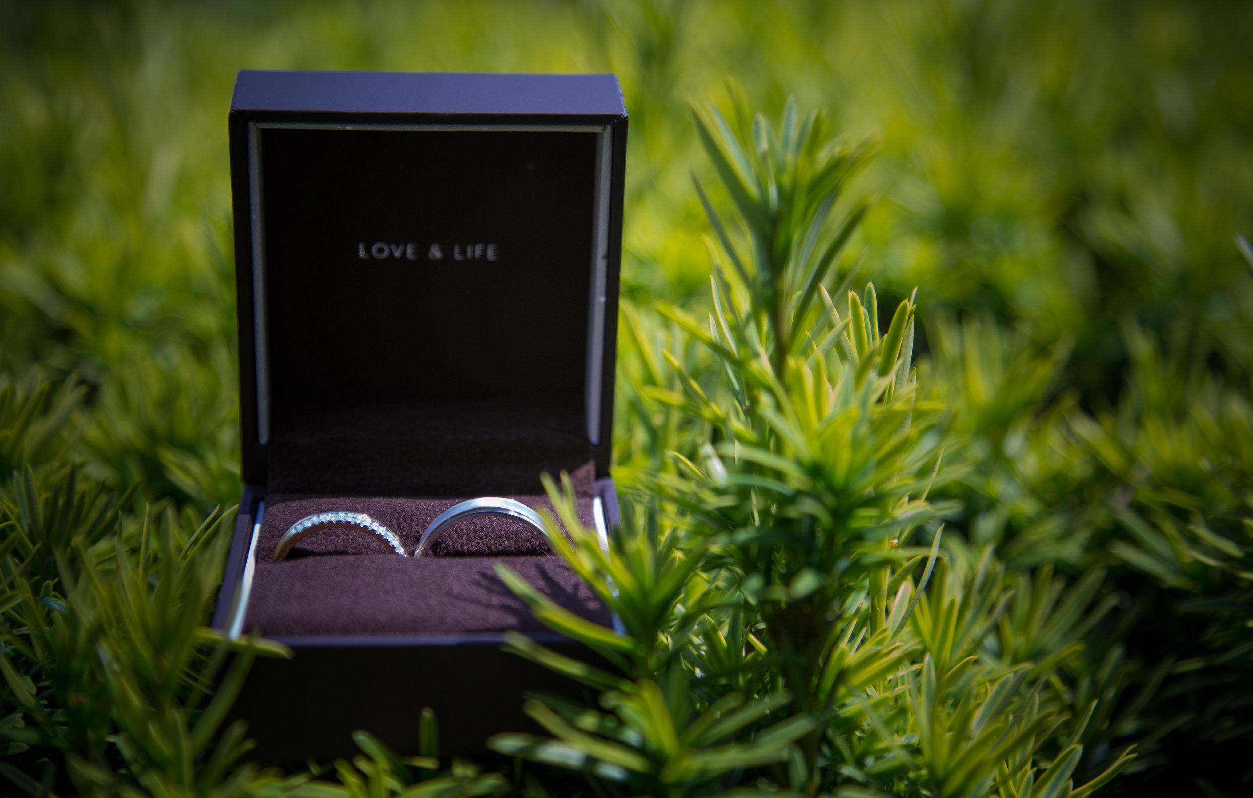 HamptonCourt-Wedding-Weybridge-Surrey-London-OatlandsParkHotel-20