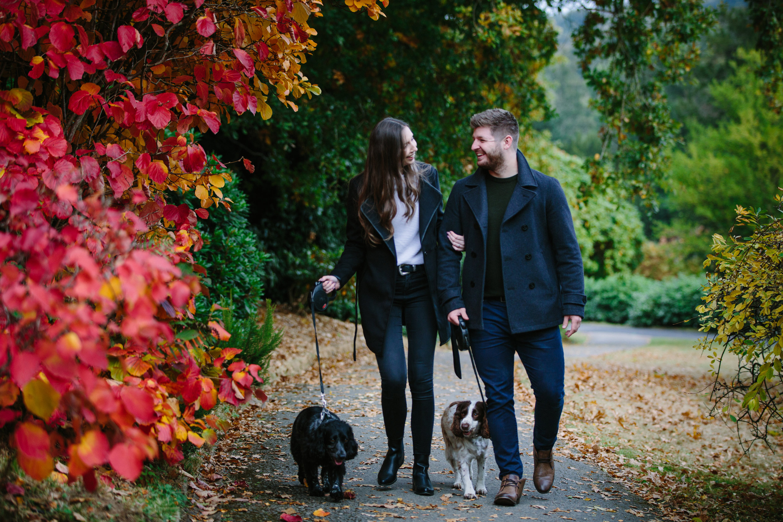Scotney-Castle-Kent-London-Wedding-Photography-dogs-11