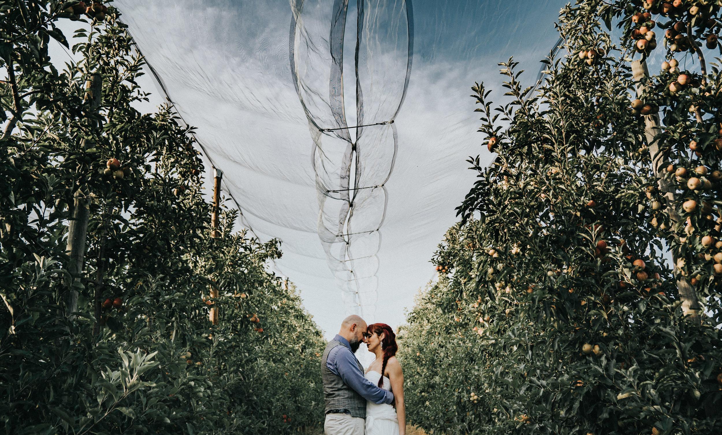 carcassonne-rural-french-wedding-photographer-france-110