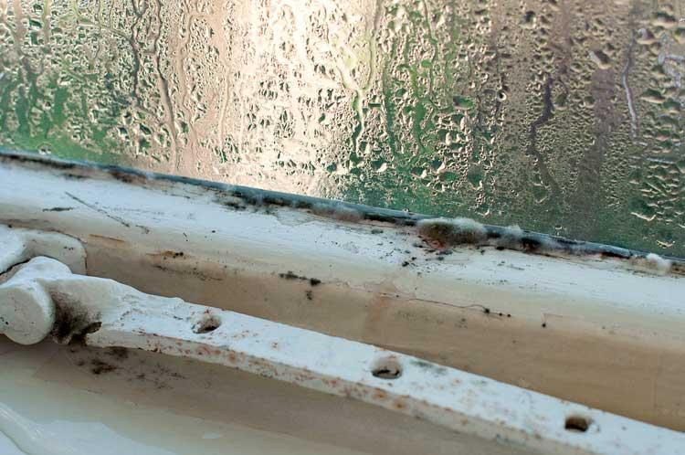 Condensation sur une vitre