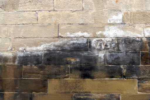 Remontées capillaires sur un mur