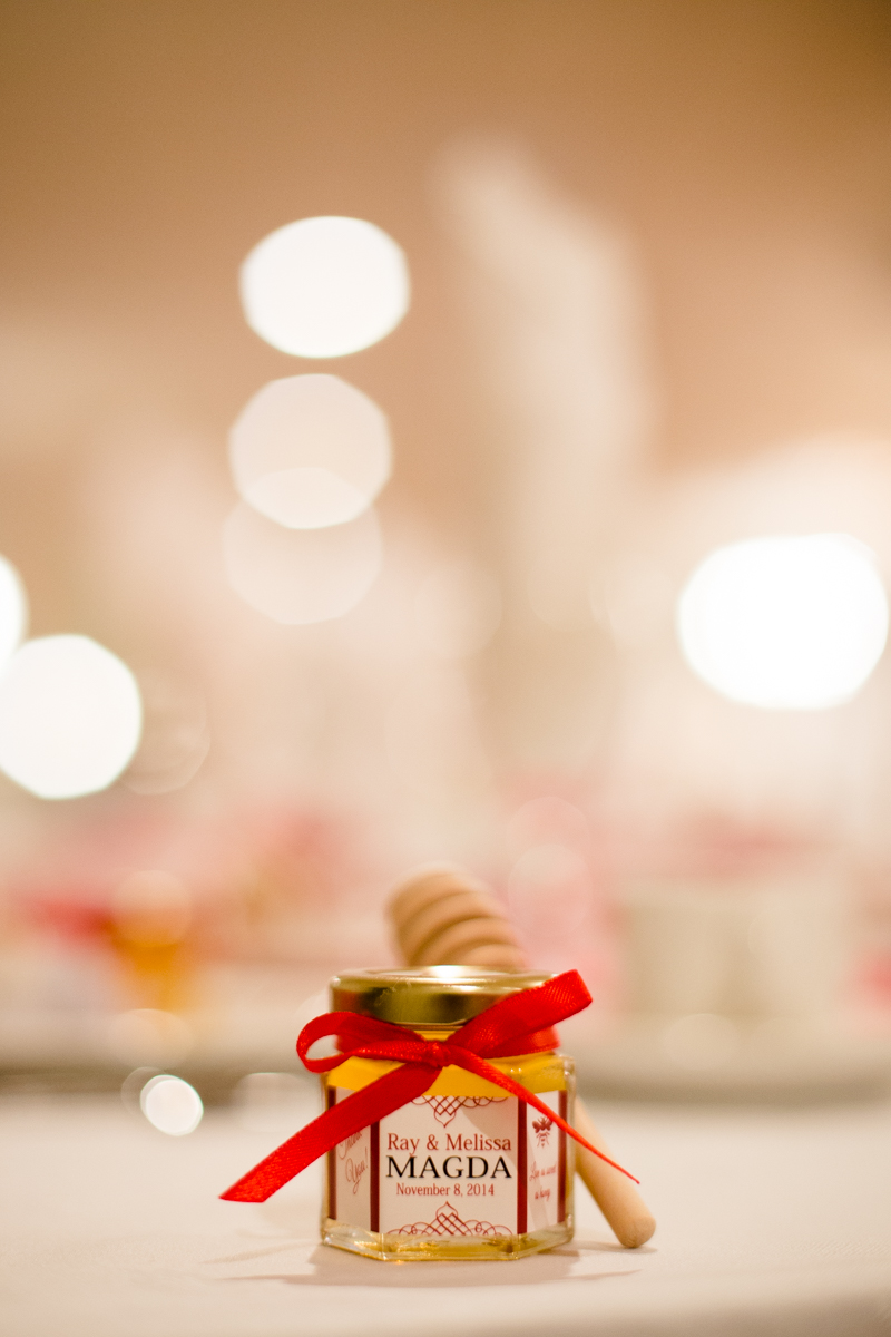 20141108-rayandmelissawedding-354