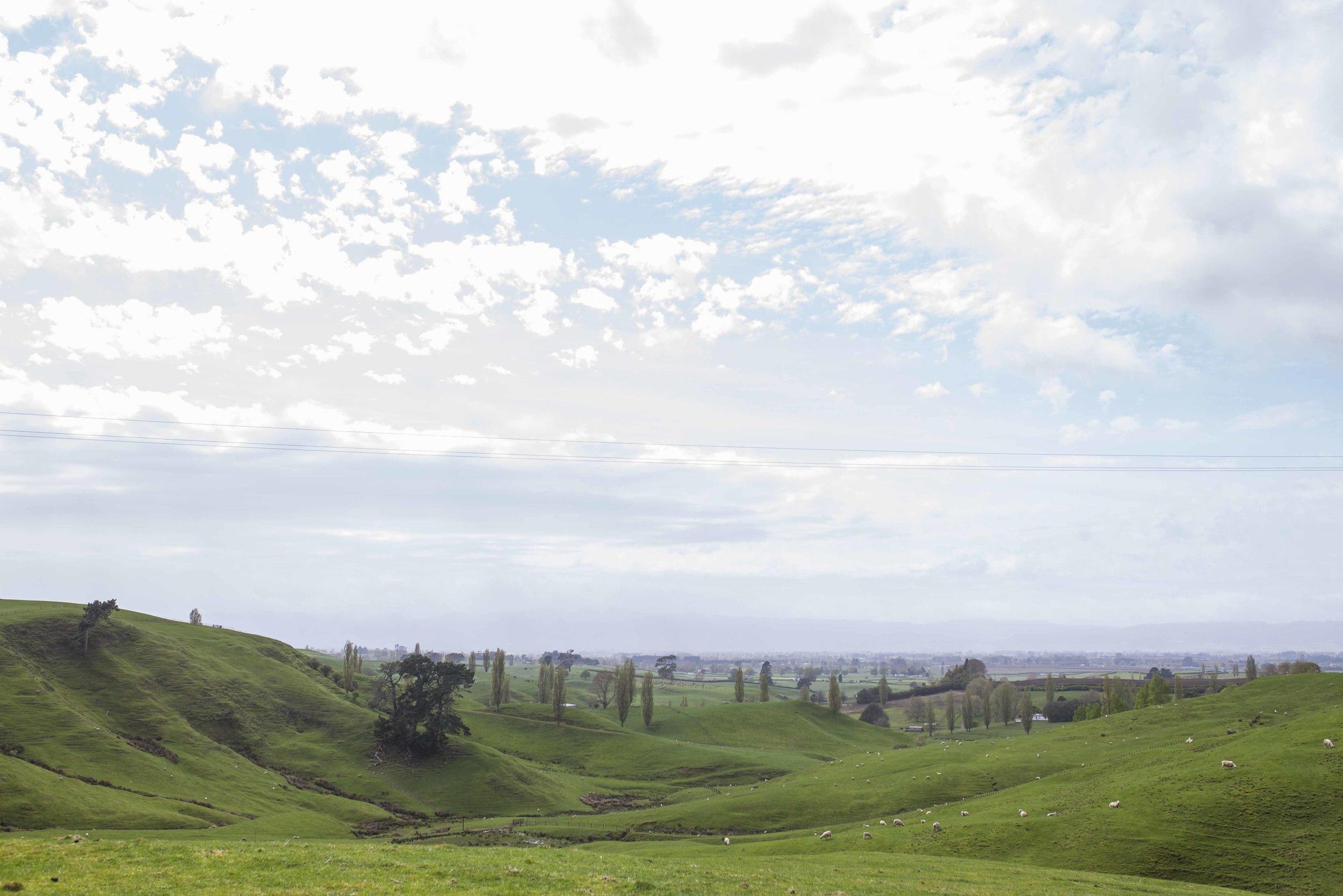 064Toronto Lifestyle Photographers -Hobbiton, New Zealand - Jono & Laynie Co.jpg