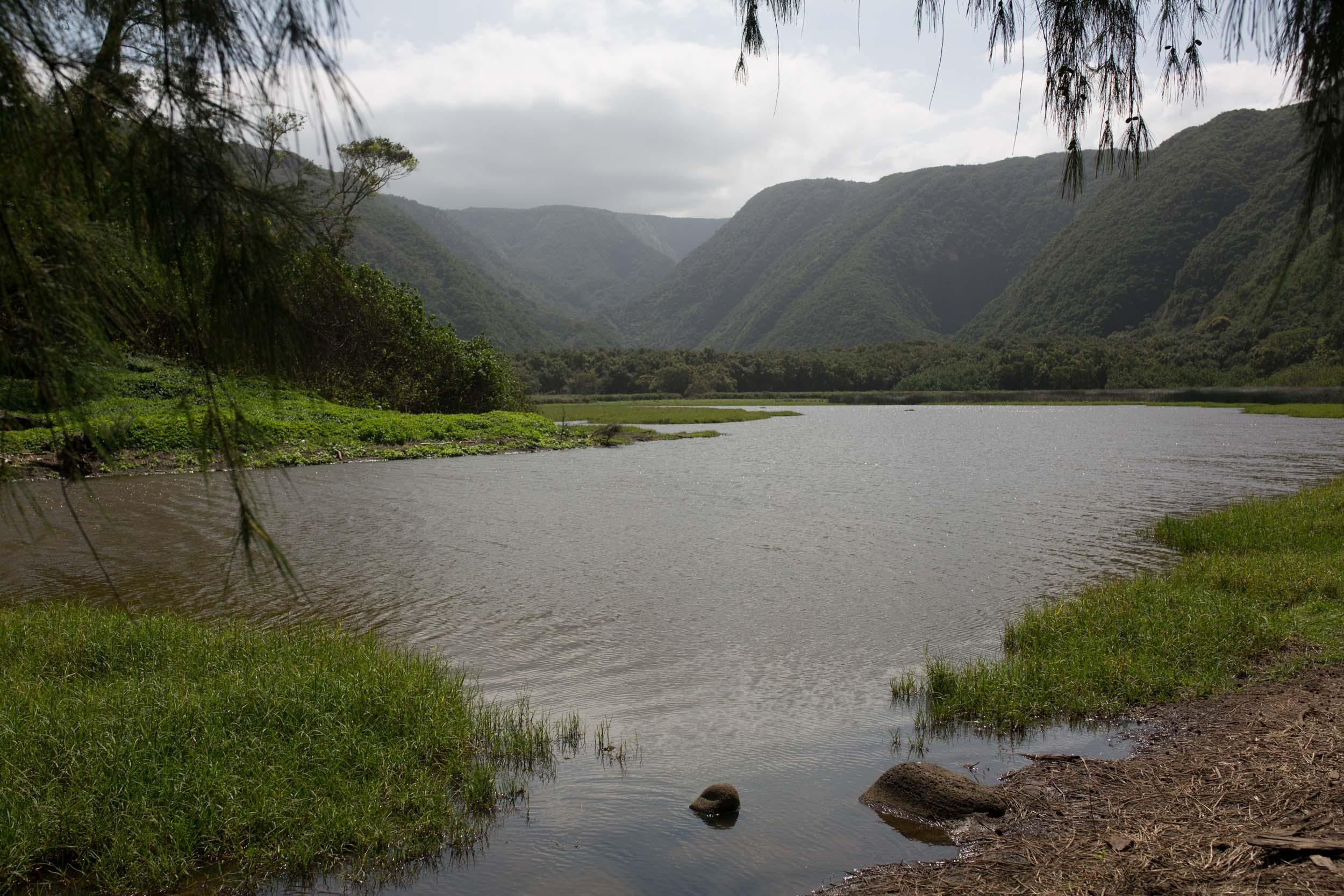 Kona Hawaii Lifestyle Photographers -Jono & Laynie Co.79.jpg