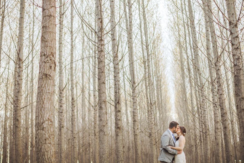 248Jono & Laynie-Toronto Wedding and Lifestyle Photographers_1.jpg