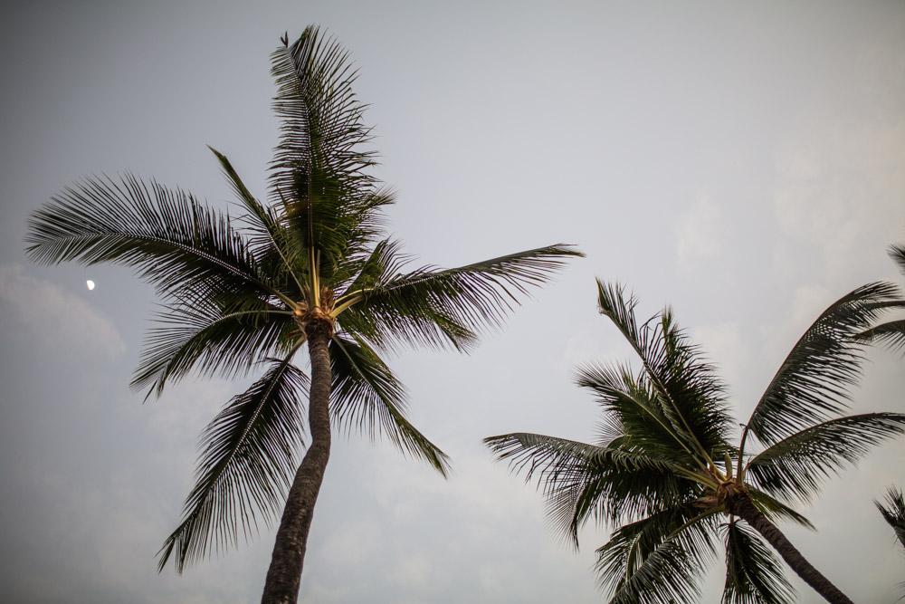 Kona Hawaii012.jpg