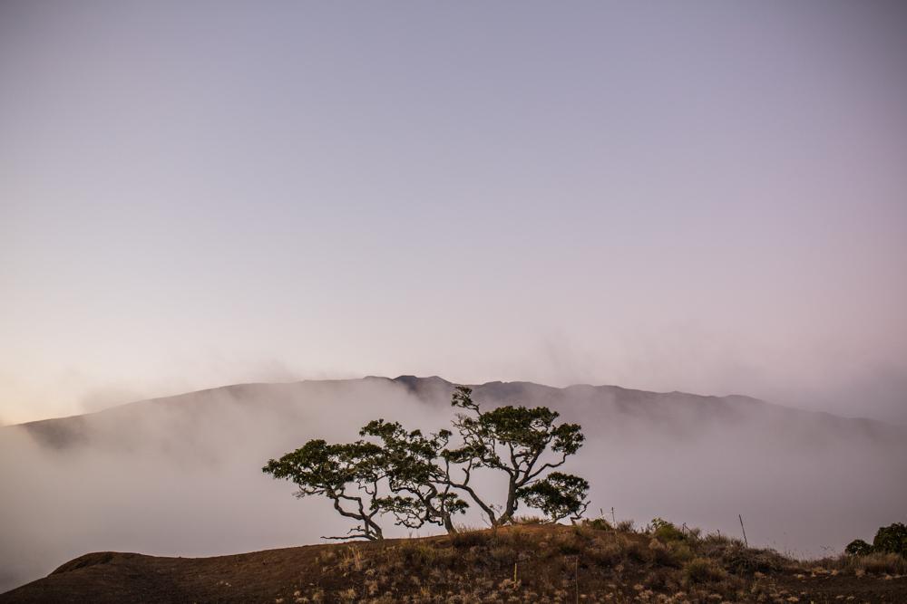 Kona Hawaii031.jpg