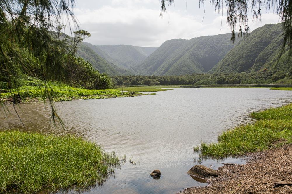 Kona Hawaii044.jpg