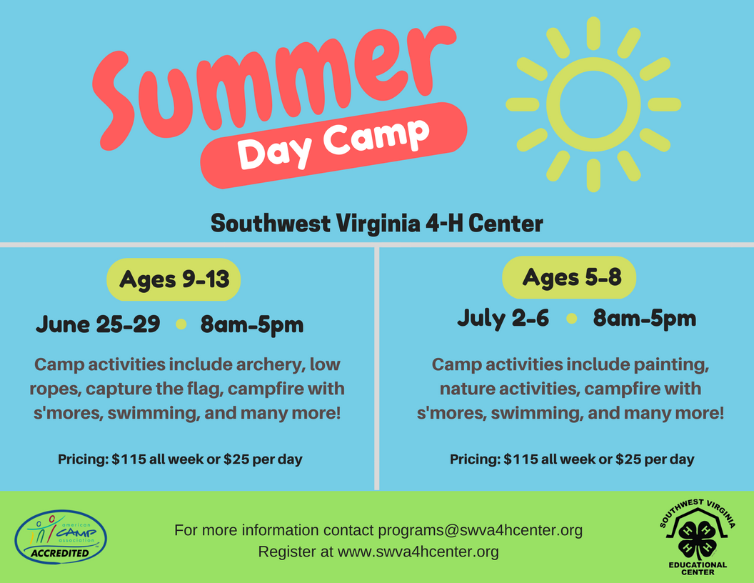 Day camp 2018.png
