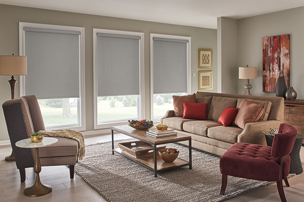Roller Shades with Motorized Lift: Harmony, Cityscape 02601 with Cassette ValanceGraber Roller Harmony Cityscape (32-0260-01)