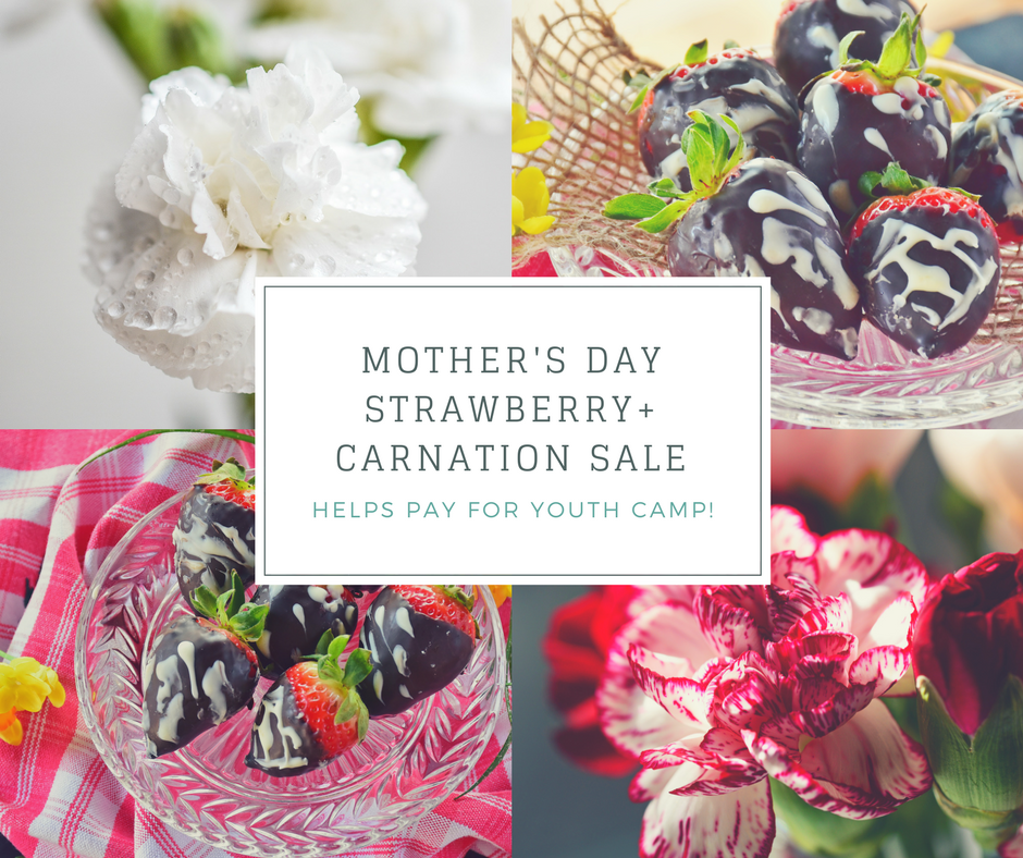 Purchase chocolate covered strawberries and carnations for Mother's Day. All proceeds help with youth camp.  Preorder yours here.