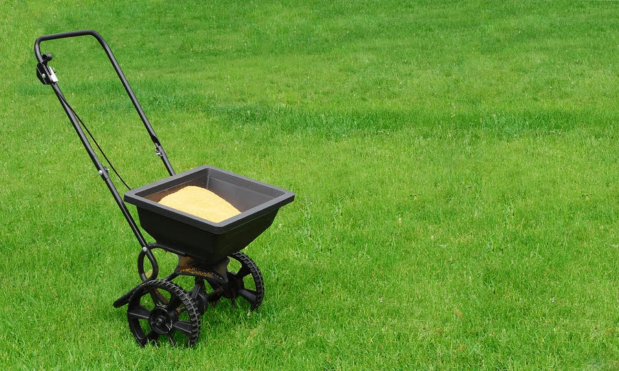 You don't need to store potentially dangerous lawn chemicals around children or pets   Read more >>