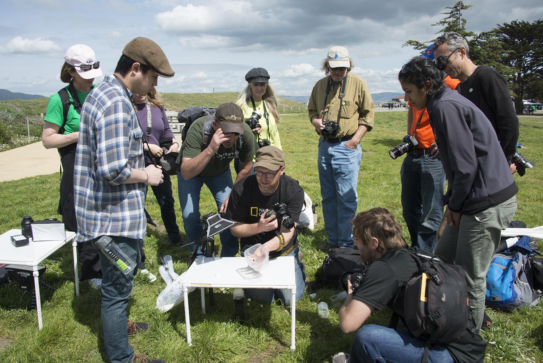 A MYN workshop at the Golden Gate National Park.jpg