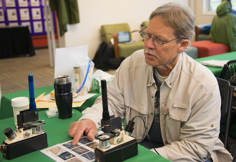 A scientist working at the Golden Gate National Park Bio Blitz in 2014.jpg