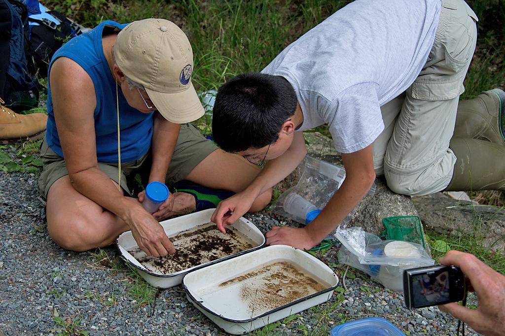 Bio Blitz 2012 at Acadia National Park.jpg