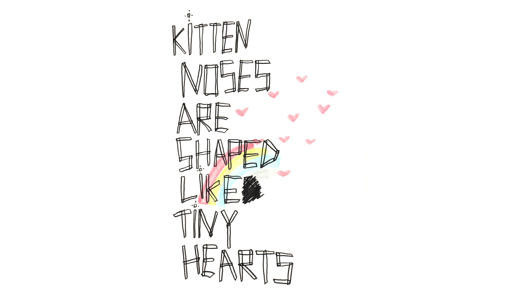 kittennoses.png