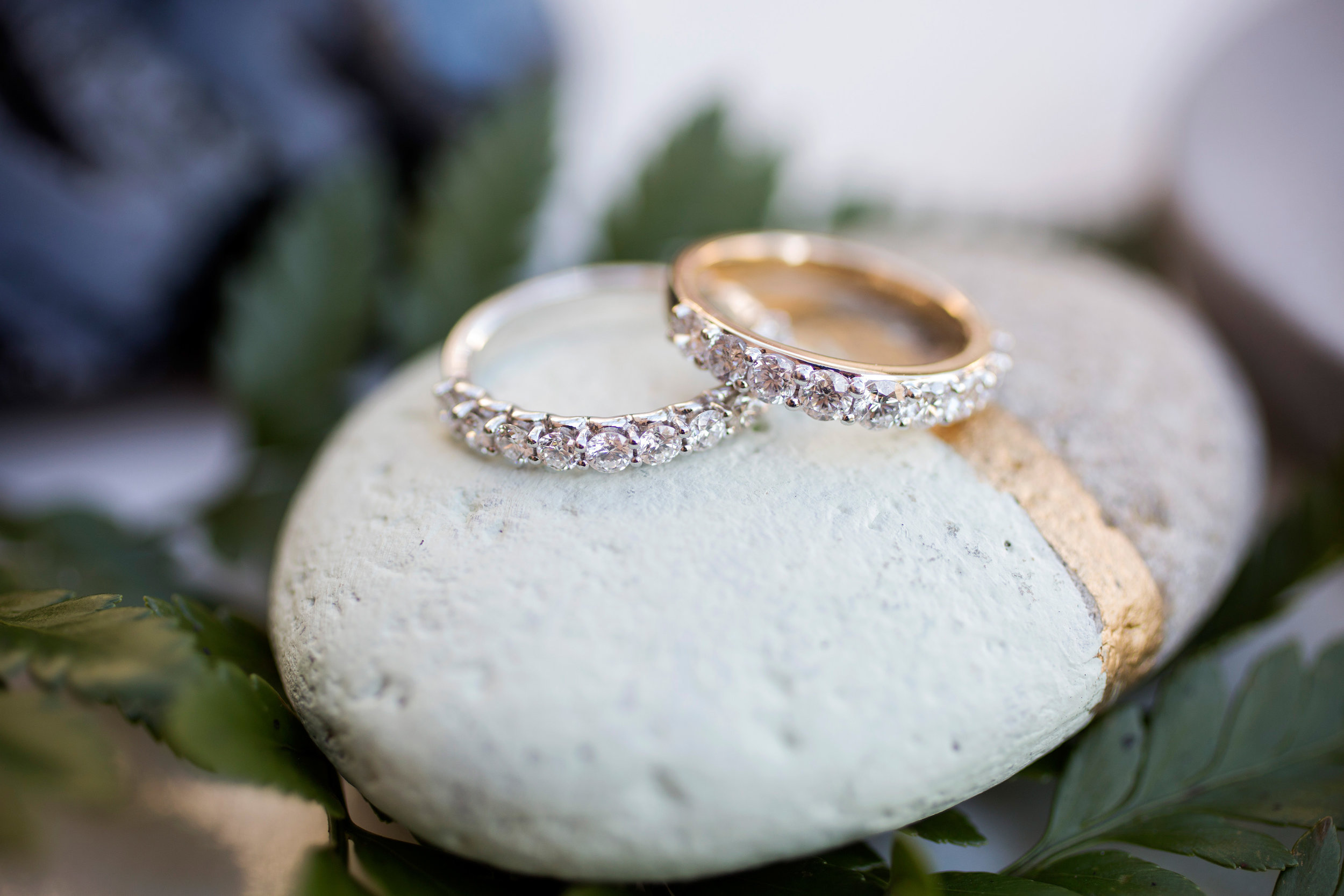 Engagement Rings on a rock