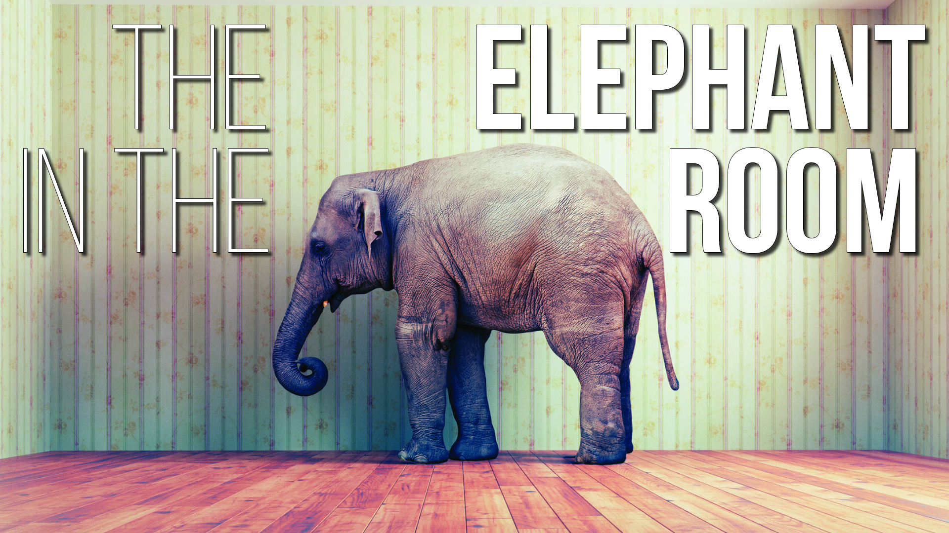 elephant in the room print2.jpg