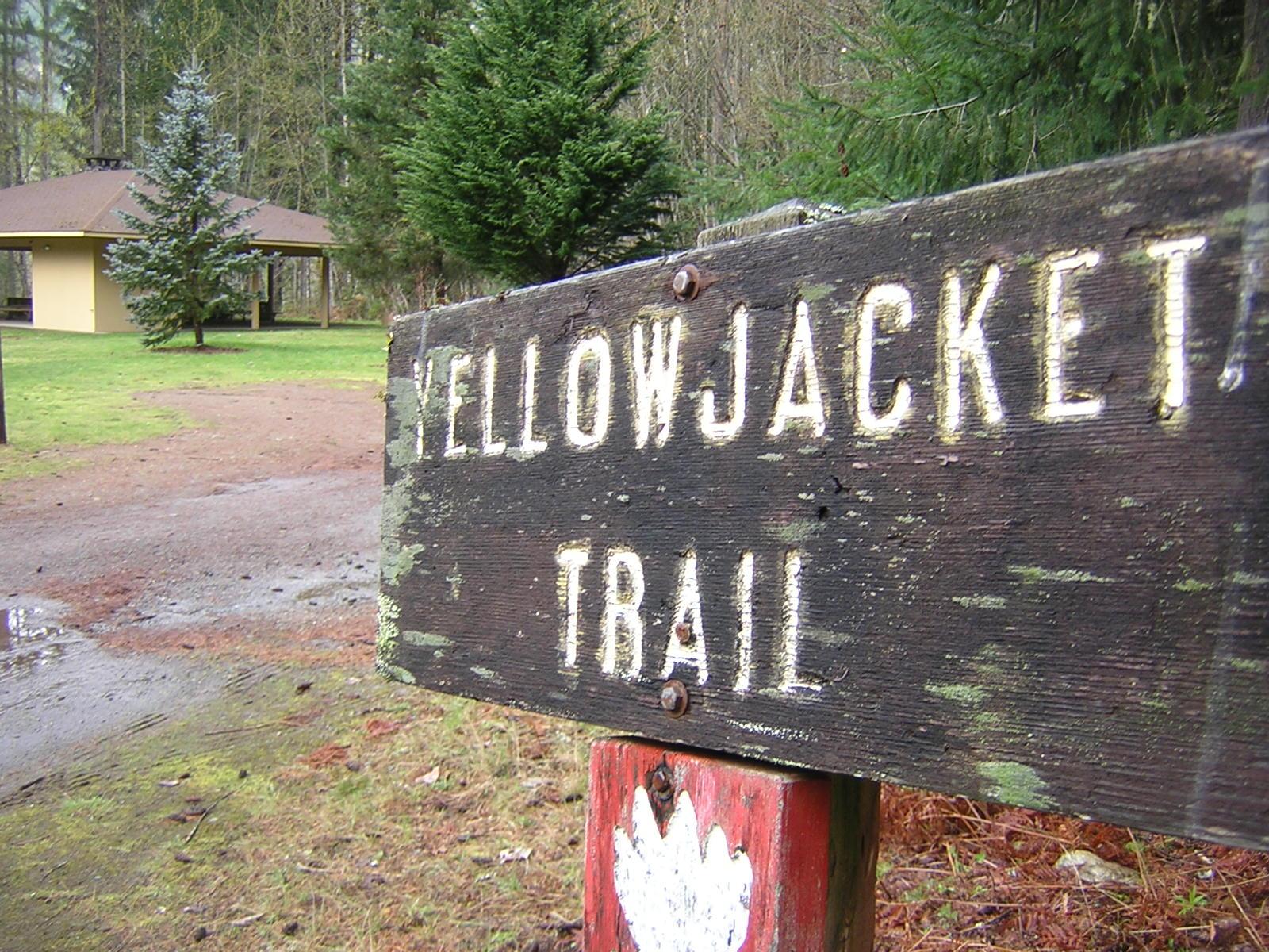 Yellowjacket Trail