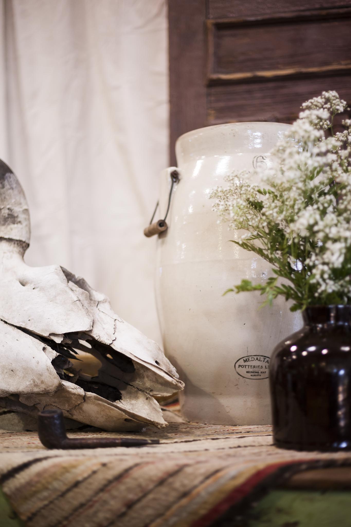 Antique Aged Vase and Decorative Skull